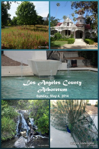 Screen capture of Los Angeles County Arboretum, Arcadia, CA collage designed using Canva