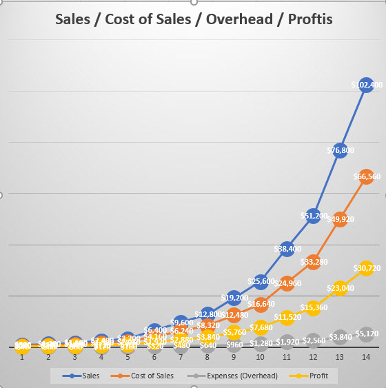 Graph of Sales, Cost of Sales, Expenses (Overhead) and Profits