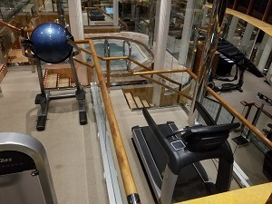 This is a picture of the Carnival Miracle Gym